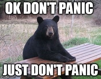 Image result for meme dont panic